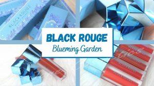 son black rouge blueming garden ver 6